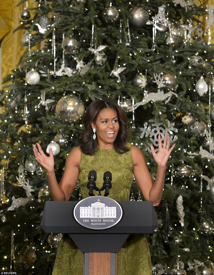 333 best 1st Lady Michelle Obama images on Pinterest First - michelle obama resume