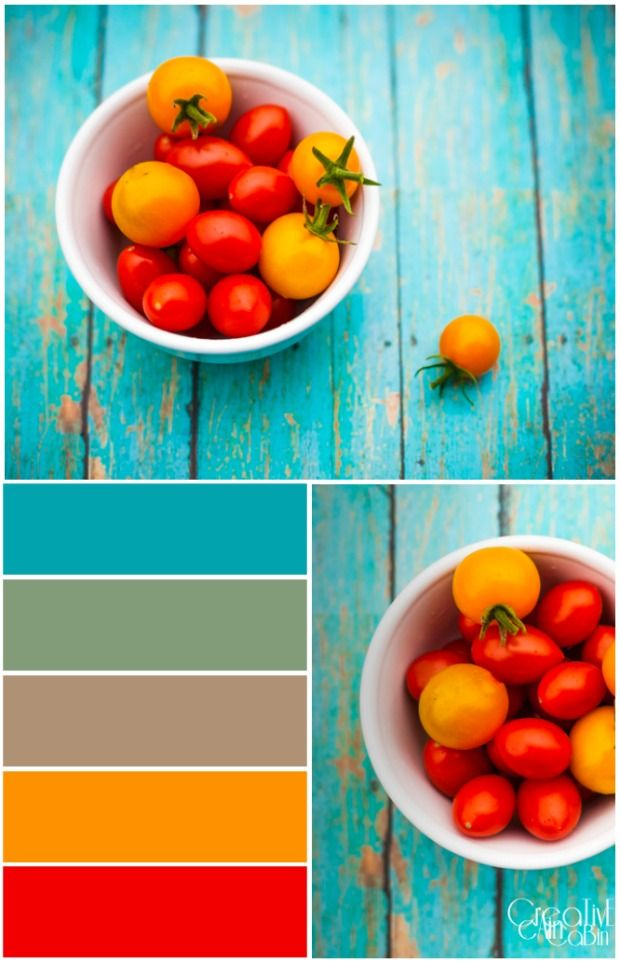 Sun Sugar and Cherry Tomatoe Color Palette | PicMonkey | CreativeCainCabin.com