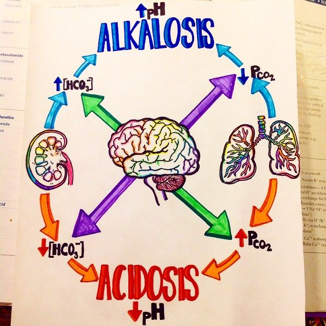 in progress #acidbasedisturbances #acid #base #acidosis #alkalosis…