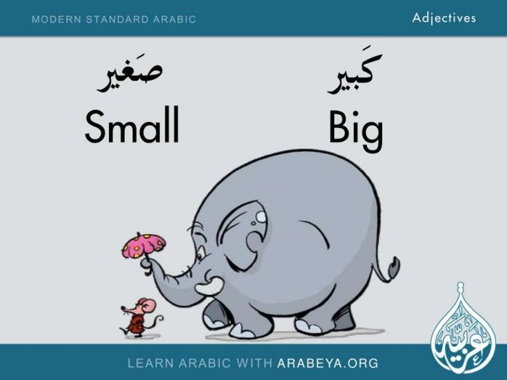 Modern Standard Arabic Adjectives Learn Modern Standard Arabic Adjectives with Arabeya Arabic Language Center www.Arabeya.org