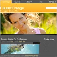 Classic Orange Template | Website Design Alaska  | #web #webdesign #WebsiteDesignAlaska  |