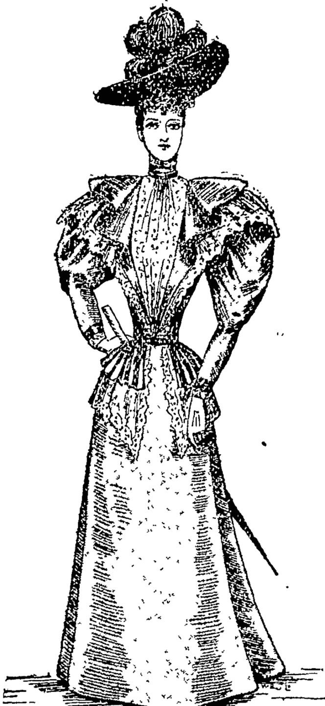 Bbidb's Travelling Dress, (Auckland Star, 04 August 1894)