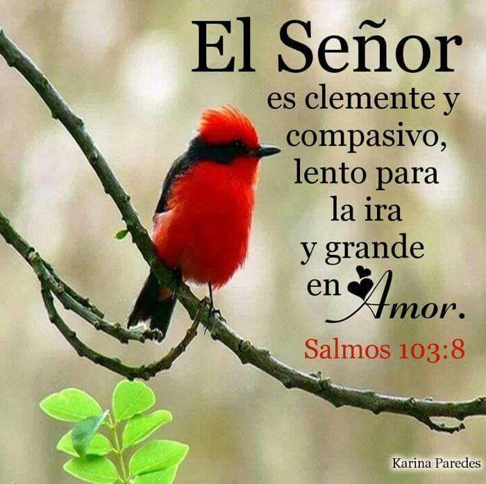 Salmo 103;8
