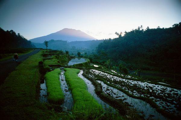 Balinese Style, Italian Décor, Unequalled Luxury: the Bulgari Resort. #ItalianLife #rice