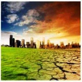 Cara Mengatasi Perubahan Iklim, Cara Menanggulangi Perubahan Iklim, Cara Menghadapi Perubahan Iklim, Cara Menanggulangi Perubahan Iklim Global, Cara Menghadapi Perubahan Iklim di Indonesia