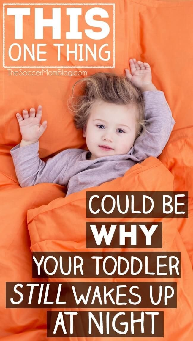 It took us over a year to figure this out!! The ONE very surprising thing that was causing our toddler sleep issues and we had NO idea! If you're stuck in the cycle of sleepless nights like we were, you'll want to check to see if you missed this too!