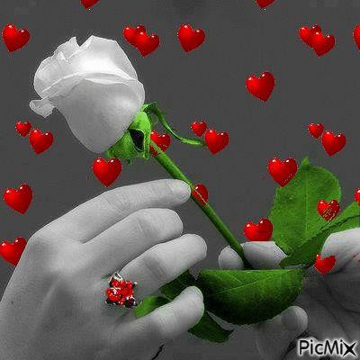 GIFS HERMOSOS: Happy candles cumple flowers etc found en la web