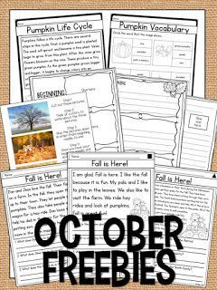 FREEBIE pages for fall activities- October Activities for a primary classroom- PLUS a freebie!