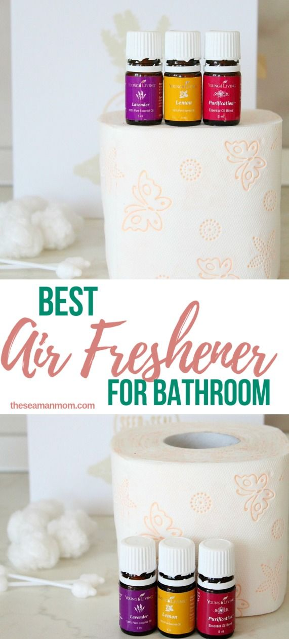 Best Air Freshener For Bathroom To Keep It Smell Like A Spa All