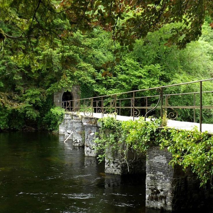 Ovest d'Irlanda   Irlanda