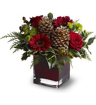 Cozy Christmas Bouquet Bring a cozy touch of Christmas to a favorite friend or co-worker with this homey floral arrangement that's perfectly simple – yet wonderfully festive! Fresh red and chartreuse blooms, evergreens and golden pinecones are delivered in a ruby red cube vase. An excellent selection for any residence or office. www.4165flower.co…