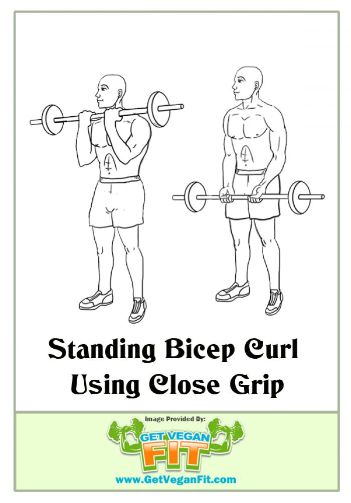 Standing Bicep Curl Close Grip Arm Exercise Illustration