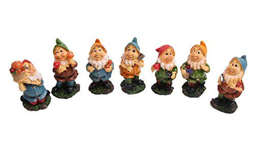 Mini Gnomes Fairy Garden Set Seven Dwarfs Statue with Mushrooms and Tools (7pcs)  Decorate your gnome garden with these mini Gnome and garden mushroom decorations.  You will be sure to give a cute touch with these fairys for your fairy garden and potted plants.  Even makes a cute gift for any occasion.  Each garden gnome measure 4 inches High.  Made of resin and are is weatherproof