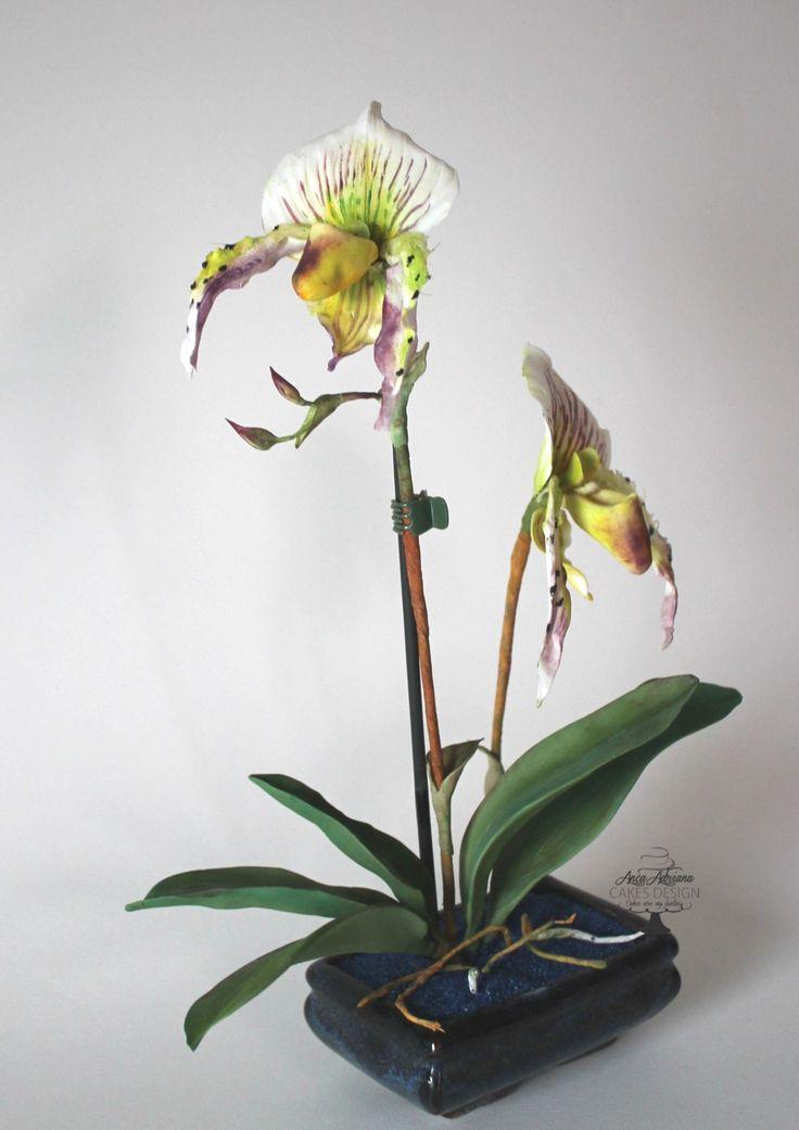 slipper orchid  -gum paste