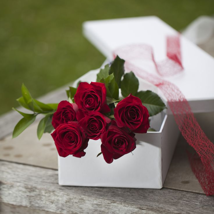 Half a dozen of beautiful red roses in a box