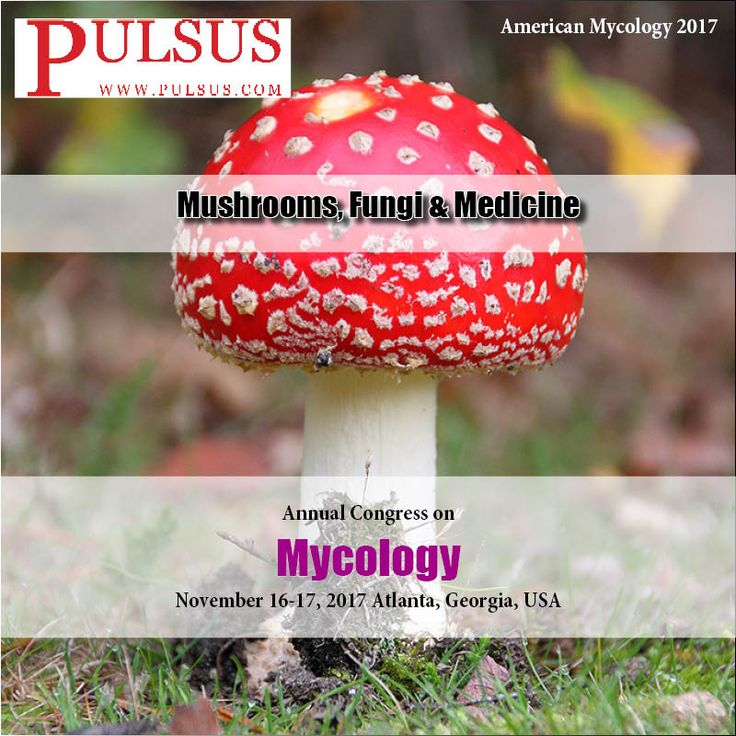 #Mushrooms are truly magical. We have always used mushrooms as food and medicine. In fact, many mushrooms have long been used throughout Asia for medicinal purposes. There are at least 270 species of mushroom that are known to have various therapeutic properties. To explore this field - #http://mycology.cmesociety.com/