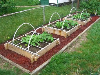 Garden Design with Raised Vegetable Garden Box, Raised Bed Vegetable Garden Designs  with How To Plant Hanging Baskets from graindesigners.com