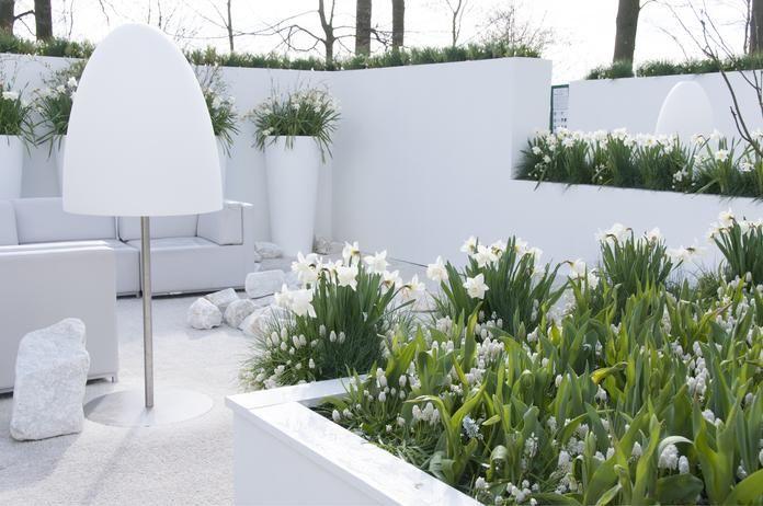 685 best Garten images on Pinterest Garden, Balconies and Balcony - pflegeleichter garten modern