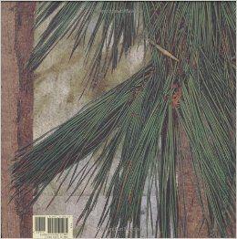 Wabi Sabi: Mark Reibstein, Ed Young: 9780316118255: Amazon.com: Books