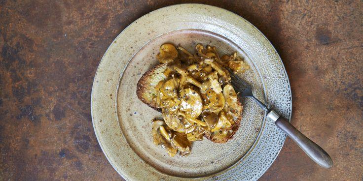 Mushroom Stroganoff on Sourdough Toast