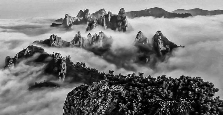 Vintage Dinosaur Ridge  http://www.mattmacdonaldphoto.com