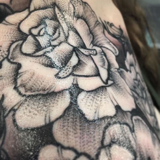 Sneak peak of @jackiecipps 's finished shoulder piece! Check back after 9pm to see both of today's rad pieces!✨✨✨ #tattoo #tattooed #ink #inked #dotwork #lineshading #rosetattoo #shouldertattoo #customtattoo #ladytattooer #empiretattooboston #comegetsome #tattoo #bostontattoo www.empiretattooinc.com