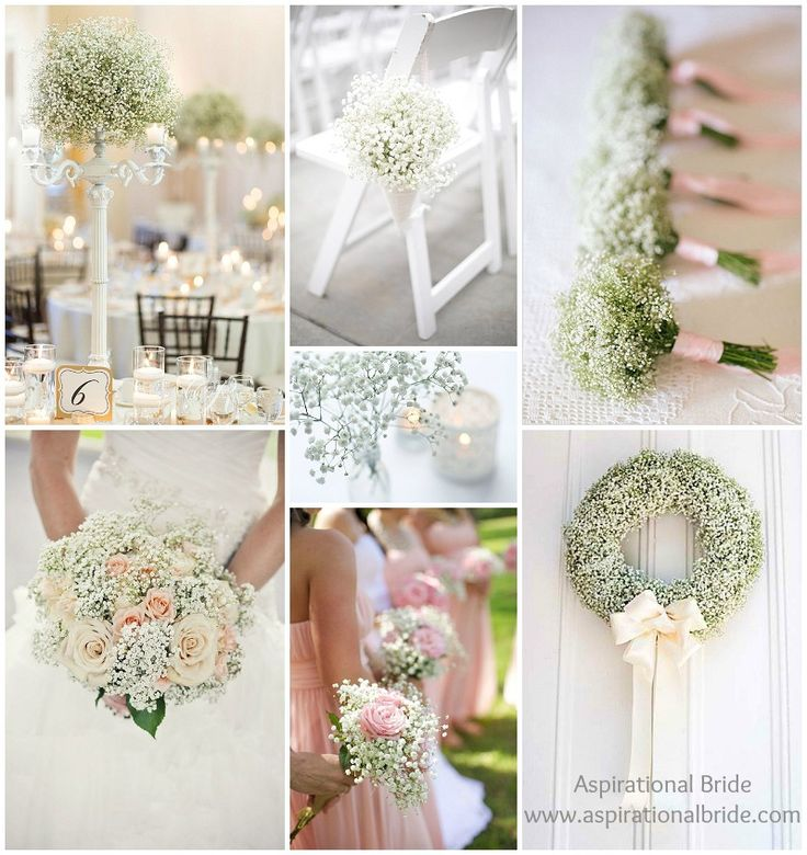 Using Gypsophila for wedding flowers. Lovely and inexpensive (FYI it's also called baby's breathe). #AspirationalBride