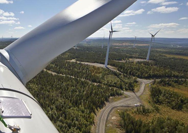 Suecia aprueba una ley de cero emisiones para convertirse en el primer país moderno en eliminar las emisiones de gases de efecto invernadero para 2045