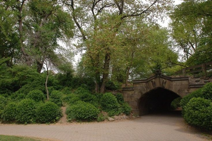 Searched Term: prospect park brooklyn address