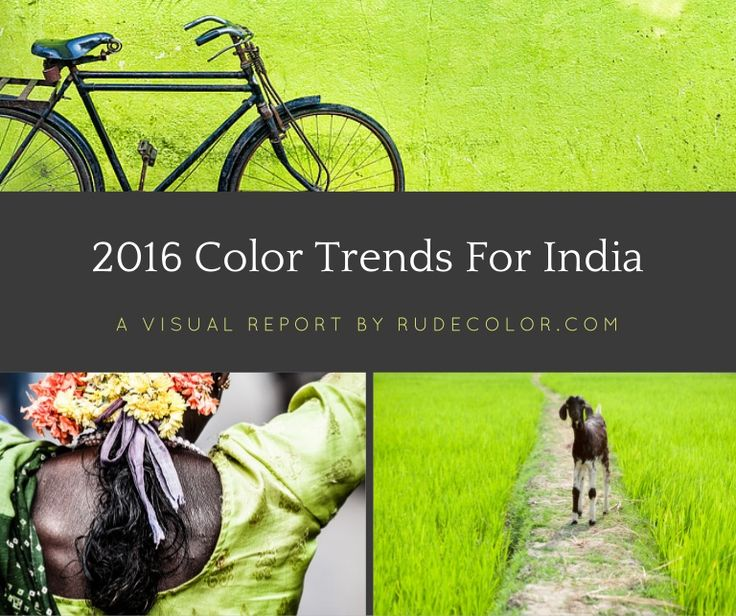 India color trends 2016