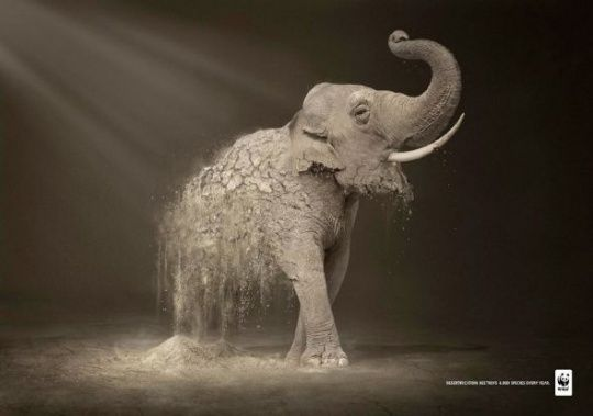 WWF Desertification: Elephant by Contrapunto BBDO    Animals in Print Ads #Expo2015 #Milan #WorldsFair