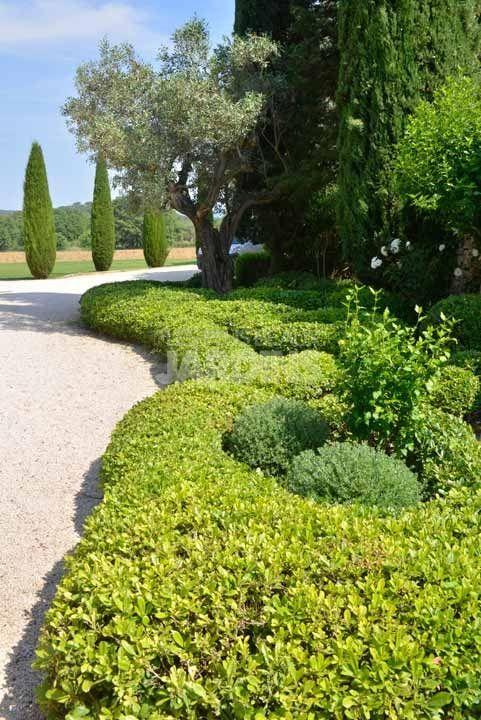 17 meilleures id es propos de jardin labyrinthe sur - Faire pousser du curcuma ...