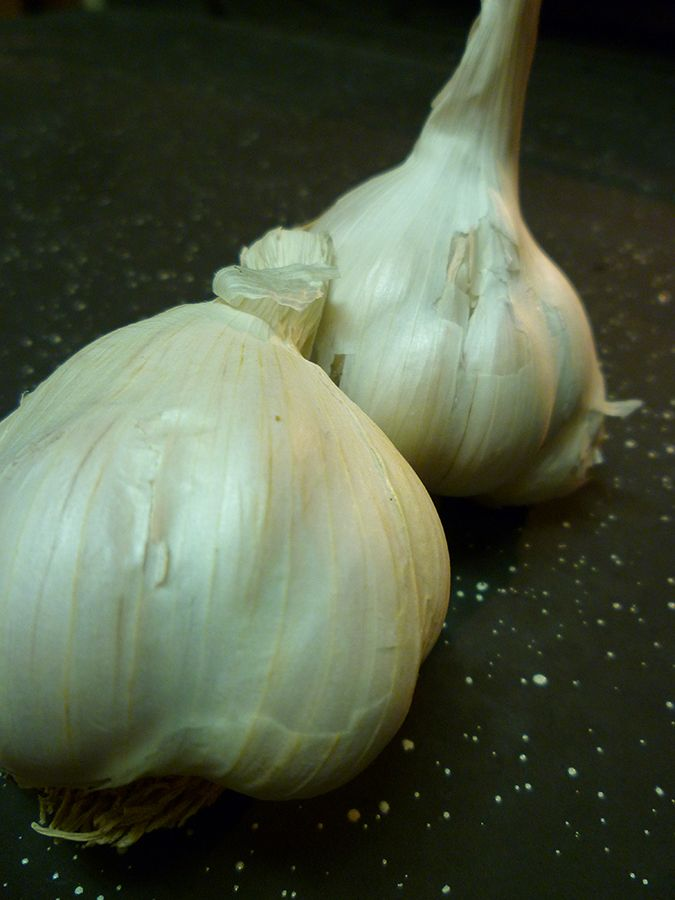 Using Garlic Water for Plants