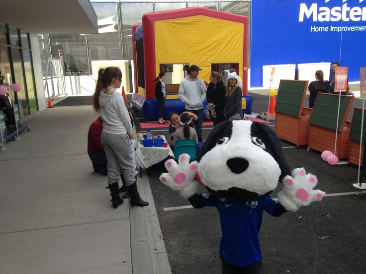 Little buddy popped into the PETstock Wagga Wagga Grand Opening! He especially loved the jumping castle.