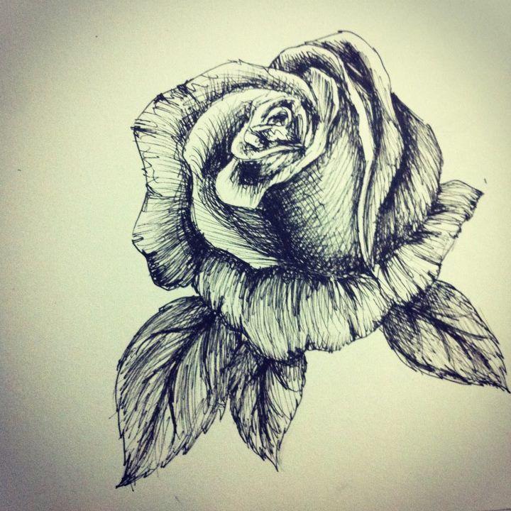 Rose pen sketch by bubblesatemojo cool art pinterest for Cool rose drawings