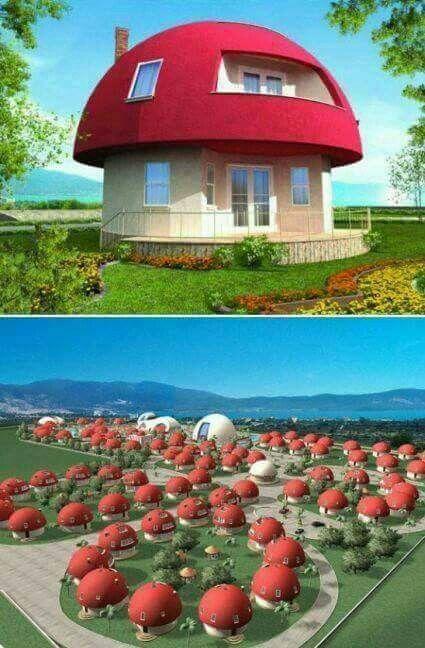 Holiday homes in Altinkum...Turkey