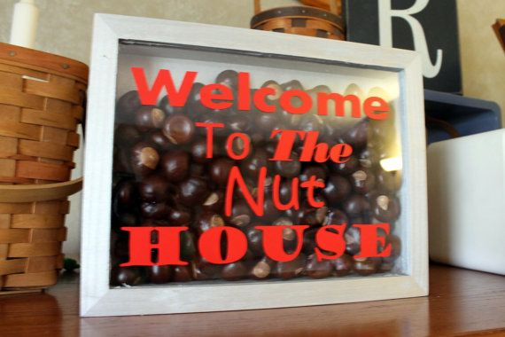 Ohio State Decor Welcome To the Nut House Shadow by thebuckeyelady