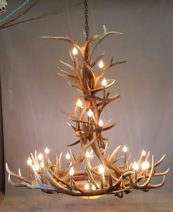 115 Best Antler Chandeliers