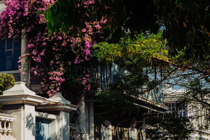 The French Quarter in Pondicherry #Pondicherry #India