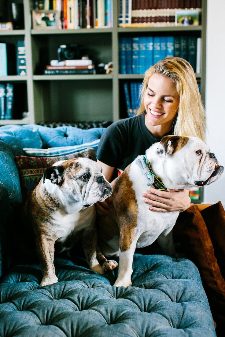 brooklyn decker dog pets