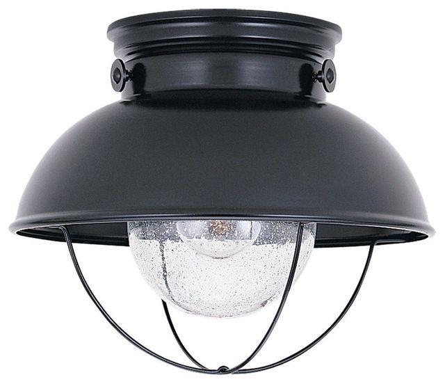 Sea Gull Lighting 8869-98 Sebring Transitional Outdoor Flush Mount Ceiling Light transitional-ceiling-lighting