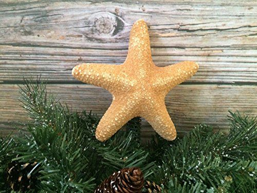 Jungle Starfish Christmas Tree Topper. Red Jungle starfish tree topper will really make your tree stand out! Unique and different, each starfish is completely different from the next. Stable spring will slip over the top of the tree with ease. Spring is painted green to match your Christmas tree. Tree toppers are made to order and sizes will vary approx. 5.5 or 7 inches. 5.5 in is a good fit for 4-5ft trees, 7 inches for 6 ft trees. *Please use your best judgement for suggested tree…