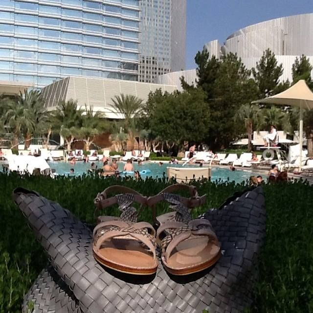 Stefania leather and snake sandals spotted in Las Vegas !