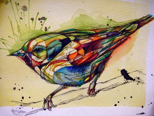 Abby Diamond bird drawings