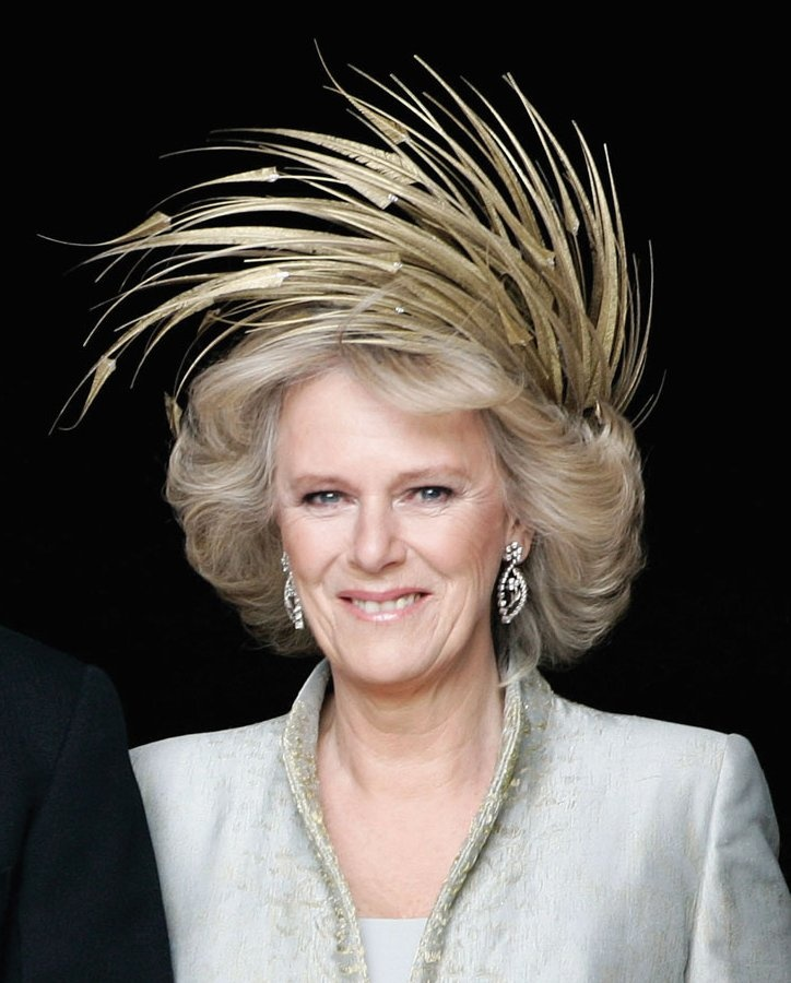 Image result for duchess of cornwall wedding head piece