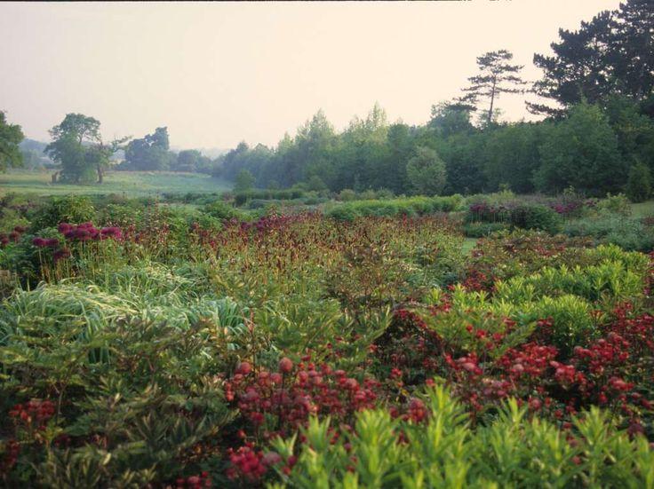 82 best piet oudolf images on pinterest landscaping for Piet oudolf landscape architect