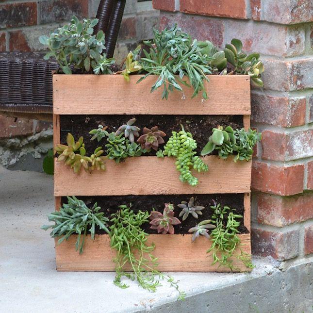 Cedar Pallet Succulent Planter