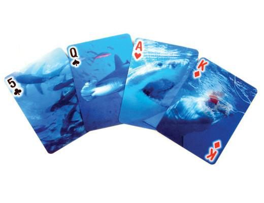 Playing Cards Shark