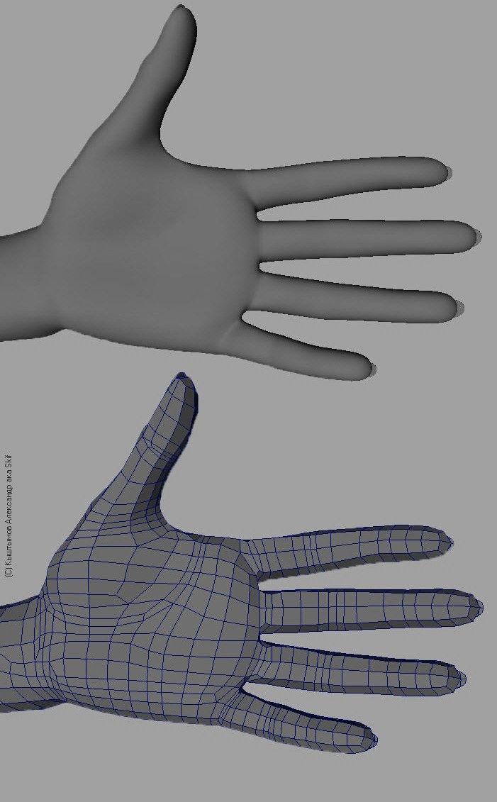 hand 3D topology