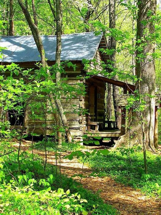 115 best beautiful cabins    images on pinterest